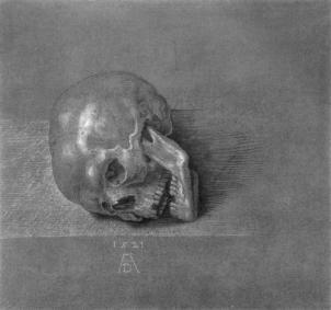 skull.jpg!Blog